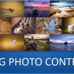 Zug Photo Contest